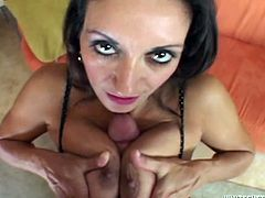 Busty brown-haired milf Persia Munir sucks and titfucks some man's boner. Then they bang in the reverse cowgirl position and doggy style and seem to enjoy it much.