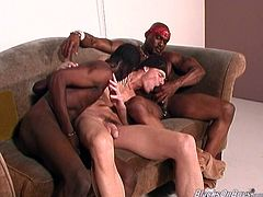 Witness this video where two black guys and a white dude go hardcore together. These men are out of control and they need to suck big cocks!