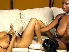 Amazing ebonys are willing to stimulate one another's puffy vags in a sexy lesbian show