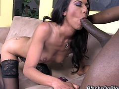 Get a load of this hardcore scene where the sexy brunette Lou Charmelle ends up with her fave covered by cum after taking a pounding from a big black cock.