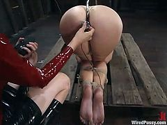 The dominatrix in this video will have a blast playing with the submissive chick by toying her with different things in different methods.