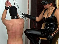 Insolent babes in leather costumes are having a rough time dominating guy in femdom