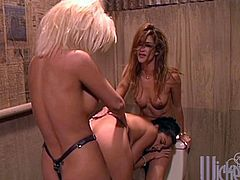 Slim brunette girl has lesbian threesome in the toilet. Two other chicks lick brunette's pussy and also use a strapon.