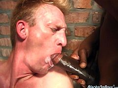 Very sexy and nasty white dude gets horny and gives nice blowjob to this big black cock in the jail. This gay then gets his ass nailed hard and rough.