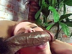 Slutty redhead chick Frankie Vargas and her horny blonde GF show their cock-sucking skills to some black dude. Then they let him drill their cunts doggy style and enjoy it much.
