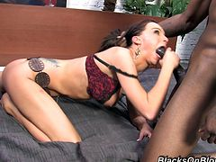 Have fun with this hardcore interracial scene where Carina Roman ends up with a mouthful of cum after fucking a big black cock.