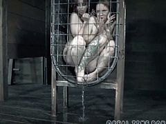 Bella Rossi and Rain DeGrey both are trapped in a small cage. Their master splatters them with a bucket of cold water. Next, Bella Rossi is tied up to a pillar and fucked by a machine.