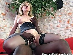 Lingerie is something that strikes men's mind with a wave of sexuality and Nina Hartley knows that very well! Black cock will make her stun!