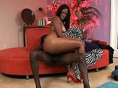 Long and dark haired ebony tootsie with awesome Tatas painfully rode on big dick of her brutal fuck dawg. A bit later she sucked that wet penis. Look at this hottie in My XXX Pass sex video!