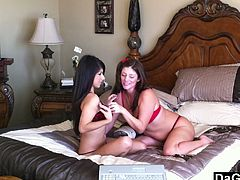 Two gorgeous girls in sexy lingerie have a nice lesbian sex