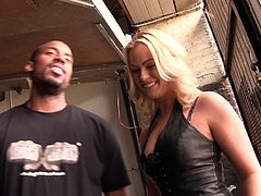 A backstage video with Krystal Carrington having an interracial sex. She gives a blowjob to a Black guy standing on her knees. Then she lies down on a bed and plays with her pussy.