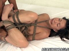 Asians Bondage brings you a hell of a free porn video where you can see how a tied up Japanese brunette gets banged balls deep into a massive explosion of pleasure.