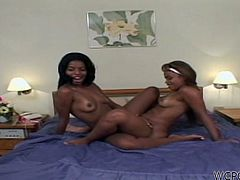 See two hot Brazilian babes, Michelle and Tabitha, taking turns sucking a thick rod of black meat. Then it's time for them to get fucked before sharing hot lesbian pleasures.
