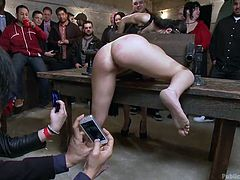 There's a bondage device on the table and Marley found out the hard way how it works. She's immobilized in it and everybody's fucking her. The chubby brunette whore in front of her rubs her face and disgrace her while the men fuck her from behind. She was a very naughty girl and that's what she deserves!