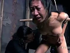 Master A. has a new fuck doll. Her name is Tia Ling and she's an Asian masochist. He ties her up to wooden frames and fucks her with an automatic machine and a vibrator.