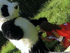 Frantic beauty wearing red hood meets cocky guy in panda costume in dark forest. She has nothing to do but to suck guy's huge dick.