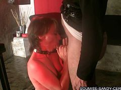 Kinky short-haired brunette is playing dirty games with some man. She kneels in front of him and sucks his wang till it explodes with cum.