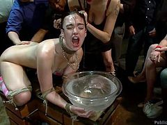 Jodi is a cute girl and knows how to behave at a party, except this time! This time she's the special guest at a very special party! While everyone has his cup Jodi has a big bowl of water and she's being pushed with her face in it as a guy roughly fucks her sexy ass. This slut is being disgraced and it turns her on