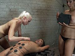 hot electro whores play with their sex slave