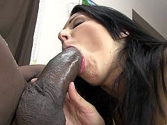 Take a look at this hot interracial video where the sexy brunette Chelsie Rae gets fucked by a thick black cock after sucking on it.