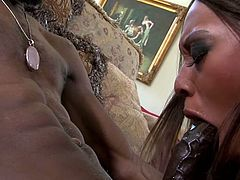 Black beauty Tila spreads her stockings covered thighs for us and reveals her chocolate pussy. The brunette hottie then grabs this guy's huge dong and slides it all in her throat. Her black, sensual lips slide hot on his rod and makes the guy wanna cum between them!