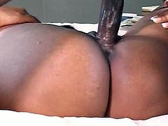 Hot black on black fuck scene where a sexy ebony babe with a great big booty takes a ride on a big hard black cock