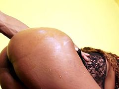 Long haired ebony chick with big round ass serves client at the highest level. He pushes his big black tool in her twat and drill her ruthlessly doggy and mish style.