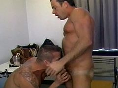 This nasty gay hunk gives his buddy a hell of a blowjob and munches his ass before he's ready to bareback him into a hell of an anal orgasm. At the same time, two beefy dudes are also playing rough in the same room!
