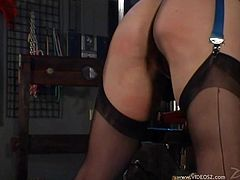 A submissive girl with perky boobs gets gagged and tied up by a hot mistress in a leather dress. Jean gets her nice ass whipped in a hot femdom video.