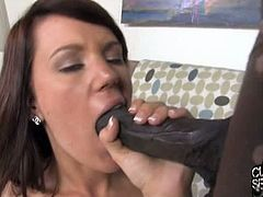 Lizzie tucker interracial cuckold