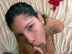 Sexy and kinky dark haired bitch with awesome body and nice ass stands on her knees on the bed and blows a cock. Have a look at this babe in My XXX Pass sex clip.