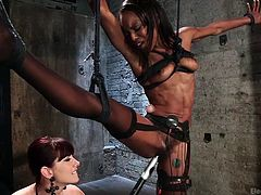 A hot redhead milf and an ebony slut share the same passion for sado-masochism. This lesbian couple uses an electric wand and electrodes to fulfill their sexual appetite. The slim ebony bitch is dreadfully tied up with ropes. No way to escape now. Click to see all the kinky details