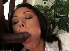 To say that Katie Angel is addicted to dark meat would be an understatement. She sucks her lover's BBC like a pro. Then he fucks her tight twat in doggy position.