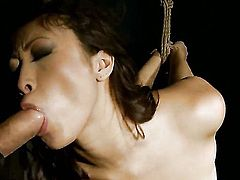Teen exotic Sharon Lee sucking like it aint no thing in oral action with hot blooded guy