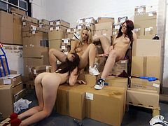 Shay Hendrix, Samantha Bentley and Sophia Knight have an amazing lesbian sex in a storage room. These busty babes use their tongues and a strapon to make each other cum.