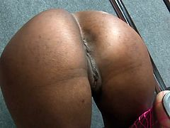 She is such a bunny that is always hungry and always in search for a thick cock! She gives a nice head to him and shows her hot ass.