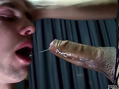 Attractive bitch in fishnet sexy dress gets her dick sucked and then blows a cock to the guy with tied eyes. Have a look at this transsexual in Pinko Shemale sex clip.