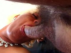 Horny latin tranny drilled hard by two horny gay dudes that also fuck each other in this hot threesome between two gays and one hot shemale
