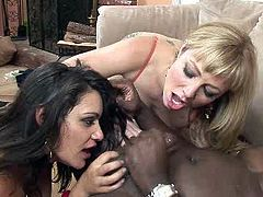 Kinky bitches that love sucking big black cock go nuts while giving deepthroat blowjob in dirty interracial porn video. Check this out.