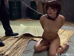 Rino Yoshihara is a dirty slave and she needs to be punished because she has been a very bad girl. She is down on the floor and her masters are treating her like a dog.