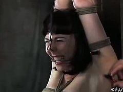 See how this sexy babe Coral Aorta in this hot bdsm video, where she has some fun with the ropes and clamps.Watch how this sexy bitch gets pleasure from the pain.