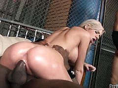 Kaylee Hilton has great cock sucking experience and expands it with hot fuck buddy