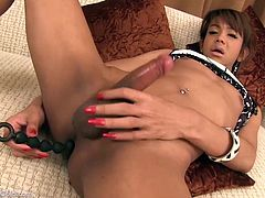 Ladyboy Mj shows off her tight asshole and starts to use various toys to experience deep anal orgasm. She also started jerking off her big cock to cum for you.