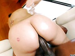 Delilah Strong gives blowjob to Sean Michaels after bum fucking