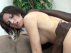 What are you waiting for? Watch this brunette babe, with a nice ass and a hairy pussy, while she goes hardcore in a reality video.