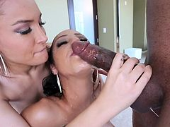 Two brunettes are licking this big black cock
