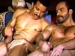 Touch yourself as you watch these crazy dudes, with nice butts and huge dicks, while they go hardcore together in a wild three way.