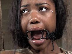 The bonded bitch in the basement is Chanell. The ropes are hurting her small tits with pierced nipples. The ebony bitch is soon tied up strongly from the ceiling. She really seems to be in extreme suffering as she has been mouth gagged without mercy. Click to watch the brunette slut enduring whipping!