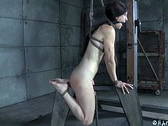 Elise has been a bad little bitch and that's why, this bald-pussied slut is getting tied up, ropes around her tits, arms, and bound with straps. Her executor puts her upside-down and fucks her with a big black dildo, as well as fingering and rubbing her clit. It may look like punishment, but it's not.