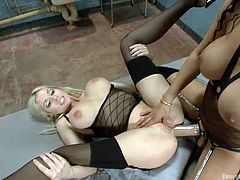 A couple of horny lesbians get really loose. The next hot scenes bring the most kinky activities in bed two bitches can do. The curly brunette eats her blonde's pussy. The dirty game involves the presence of a strap on. The milfs seem to enjoy doing it the anal way. Click to see! They've gone wild!